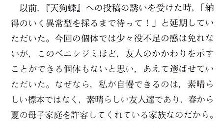 ベニシジミ4.jpg